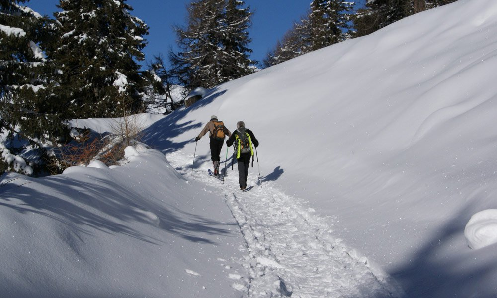 Skiing & Snowshoeing in February