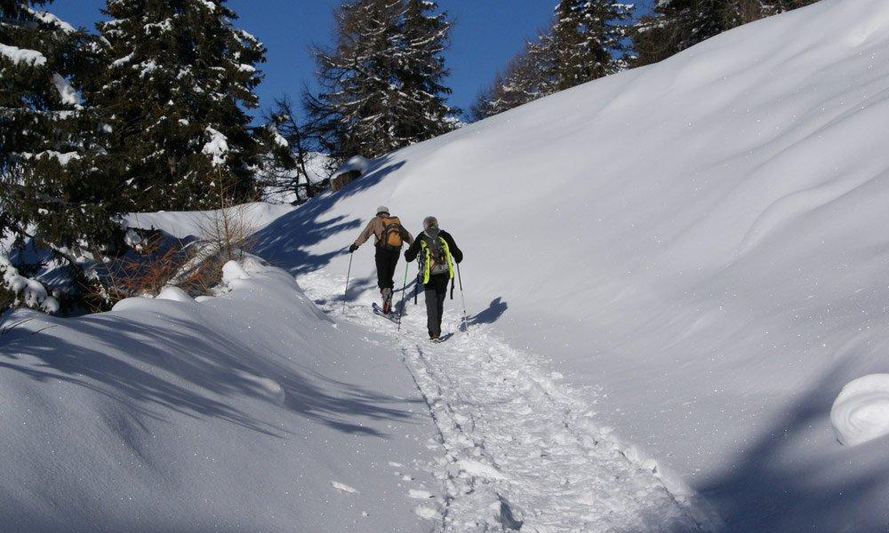 Skilaufen & Schneeschuhwandern im Februar